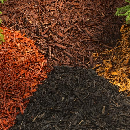 Mulch Miami, Florida